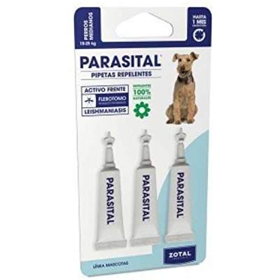 Todo lo necesario para tener a nuestro mejor amigo libre de parasitos